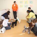 ◆子犬限定しつけ方教室~基礎編~◆