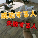 子犬のしつけを「成功する人」と「失敗する人」の意外な共通点